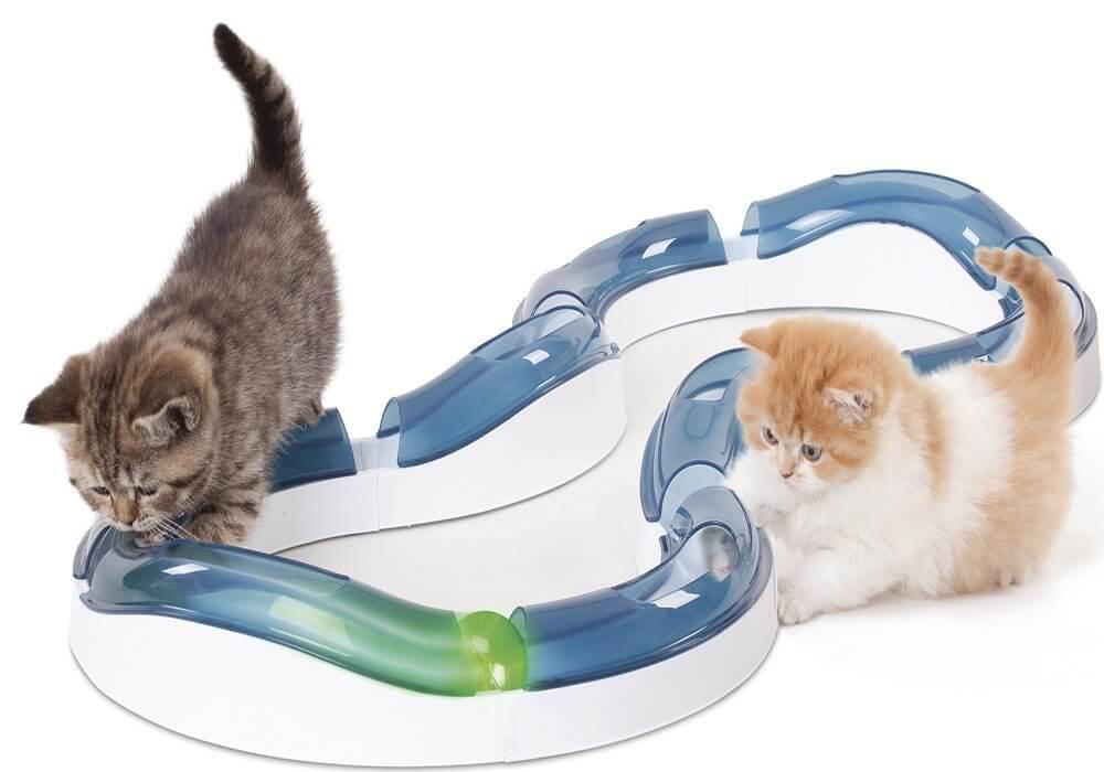 kissanlelu-testi