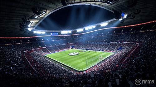 Ps4 Spiele Quartal 3 2018 - FIFA 19 - Standard Edition - [PlayStation 4]
