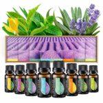 Tarjous Aroma Oil O'linear Essential Oils Set (8x10ml)