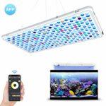 zum Angebot LED Aquarium Beleuchtung Relassy 56x30cm
