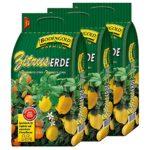 zum Angebot Zitruserde Bodengold Premium Spezialerde