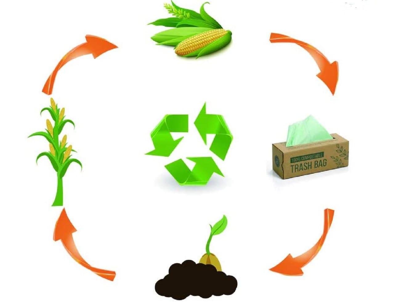 Biologisch abbaubare Müllbeutel