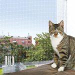 Balkon Katzennetz