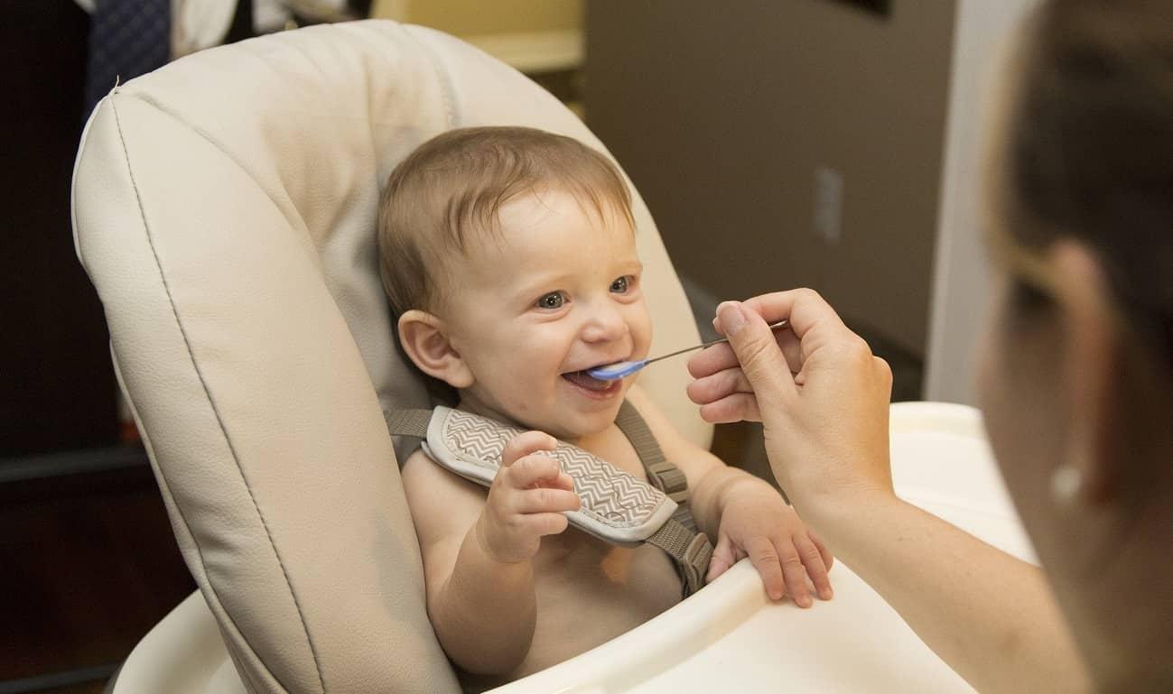 Baby Nahrungszubereiter